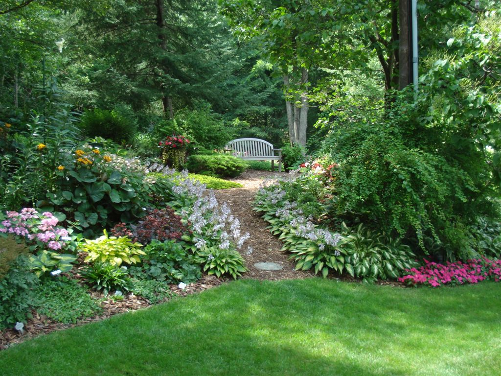 Transform Your Backyard Into A Botanic Garden With